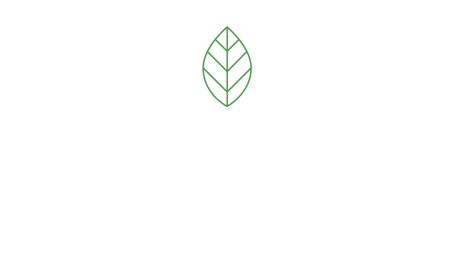 VIVAREVO Immobilien Consulting